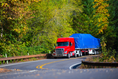 Powerful heavy huge bright red modern professional long haul semi truck with a protective grille, low roof and flat bed trailer transporting commercial cargo covered blue tharp cornering scenic highway in the forest the tree starts to fall.